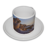 Litomorfismi_1B Tazza Coffee Panoramica