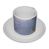 light blue Tazza Coffee Panoramica