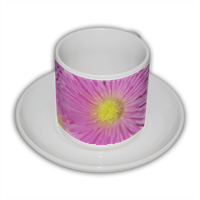 Fuchsia Tazza Coffee Panoramica