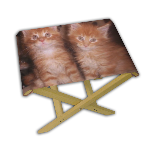 Maine coon cats Sgabello con stampa