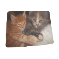 Best Friends Foto su Coperta Baby