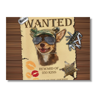 Wanted Rambo Dog Poster carta opaca