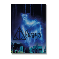 always Poster carta lucida