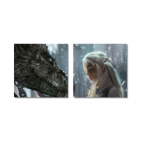 Daenerys with Dragon  Tela in pannelli