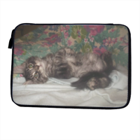 Cute kitten Porta iPad-eReader