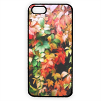 Rampicante Cover iPhone 5