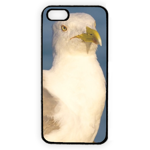 Gabbiano Cover iPhone 5