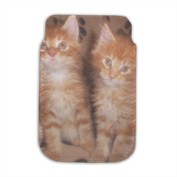 Maine coon cats Porta smartphone