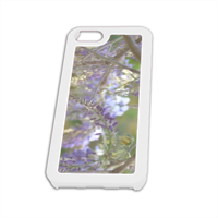 glicine Cover iPhone5 Fashion