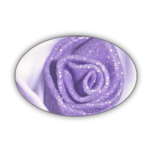 Rosa Viola Stickers ovale