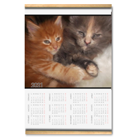 Best Friends Calendario su arazzo A3