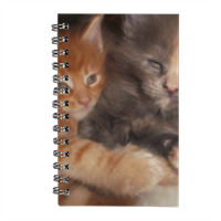 Best Friends Agenda settimanale small