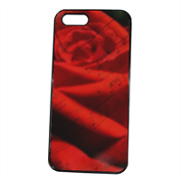 Rosa e note Cover iPhone 5S