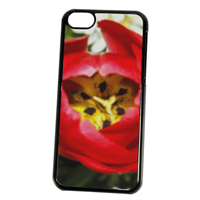 Fiori 2 Cover iPhone 5C