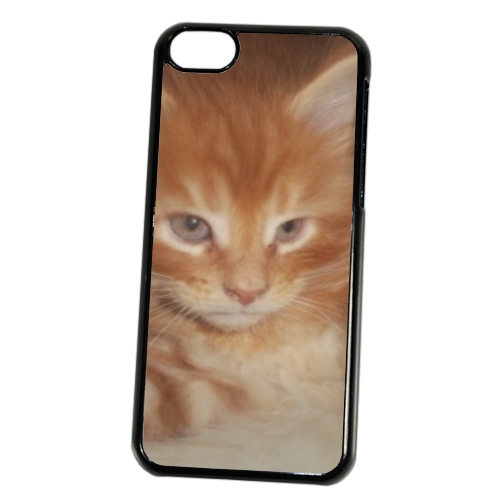 Adorable Cover iPhone 5C