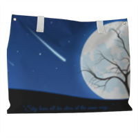 A magic night Borsa mare