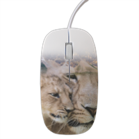 LIONS Mouse stampa 3D