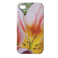 Fiori 1 Cover iPhone4 4s stampa 3D