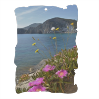 mare di ponza Pergamena in masonite