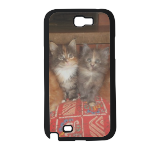 Kittens Cover Samsung galaxy note 2