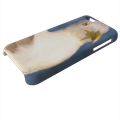 Gabbiano Cover iPhone 5c stampa 3D