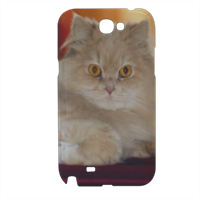 Persiano Cover samsung galaxy note2 3d