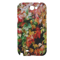 Rampicante Cover samsung galaxy note2 3d