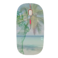 anima spiaggia Mouse stampa 3D wireless