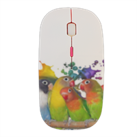 PAPPAGALLINI Mouse stampa 3D wireless