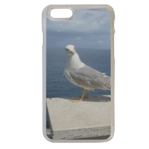 Gabbiano curioso Cover iPhone 6