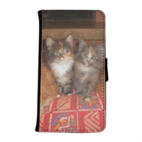 Kittens Flip Cover Samsung Galaxy S6