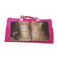 Maine coon cats Borsa palestra