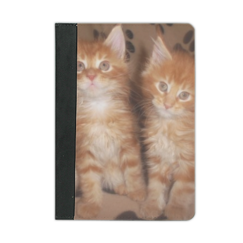 Maine coon cats Custodia iPad mini 4