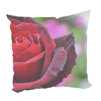 gocce su rose Foto su Cuscino fashion
