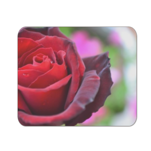 gocce su rose Mousepad in masonite