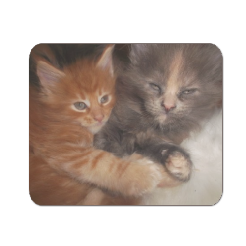 Best Friends Mousepad in masonite