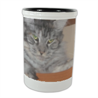 MAINE COON Portaposate in ceramica