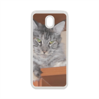 MAINE COON Cover in silicone Samsung J7 2017